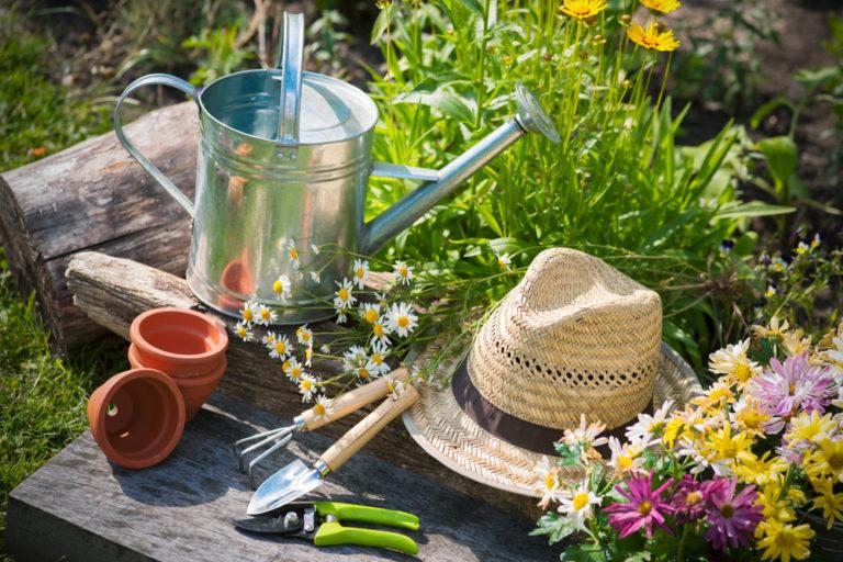 Ένας κήπος αρωματικών φυτών στο μπαλκόνι | vita.gr