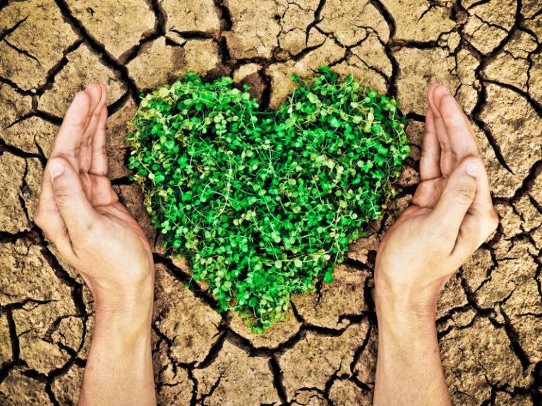 Οι συνέπειες της κλιματικής αλλαγής | vita.gr