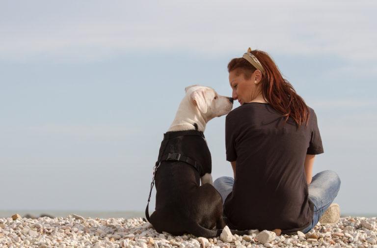 Ο σκύλος μας λατρεύει τη μυρωδιά μας | vita.gr