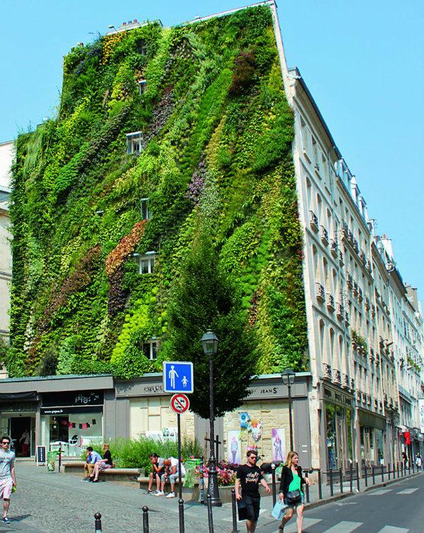 Τοίχος γεμάτος ζωή | vita.gr