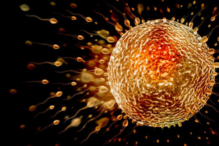 Χημικά απειλούν την ανδρική γονιμότητα | vita.gr