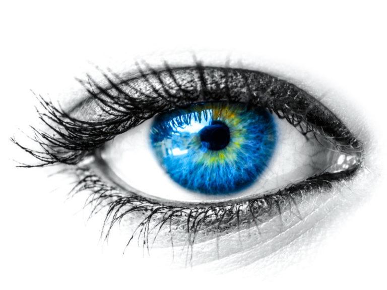 Σταφύλια για γερά μάτια | vita.gr