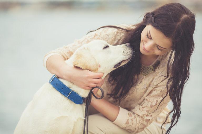 Και οι σκύλοι ζηλεύουν | vita.gr