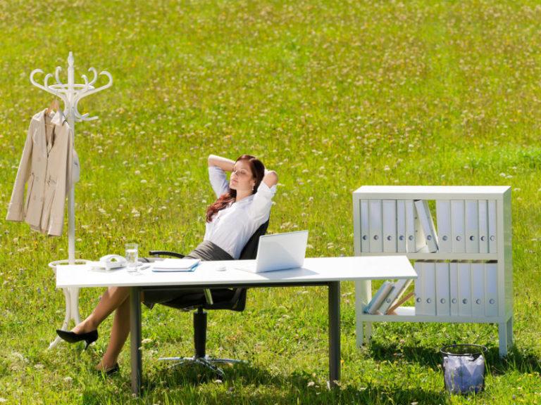 Πιο παραγωγικοί με φυτά στο γραφείο | vita.gr