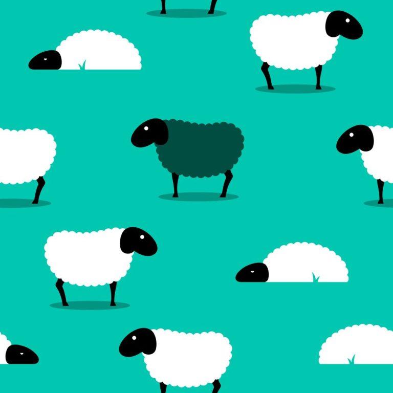 Μετρώντας προβατάκια… | vita.gr
