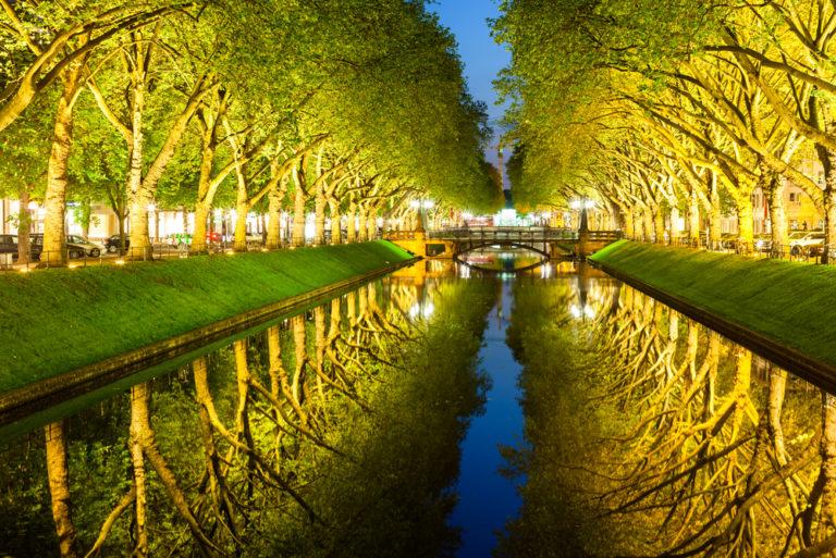 Δέντρα: το νέο ηρεμιστικό | vita.gr