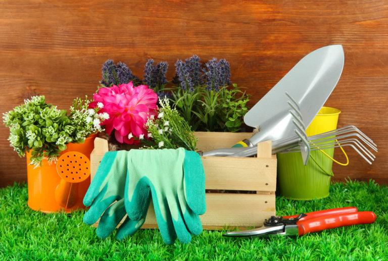 Εξαφανίζουμε τα αγριόχορτα χωρίς χημικά | vita.gr