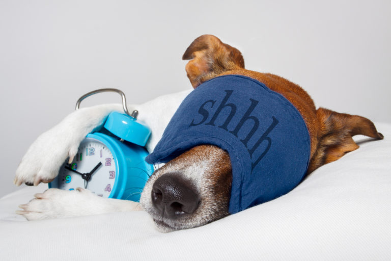 Don't worry be happy, μόνο κοιμηθείτε νωρίς | vita.gr