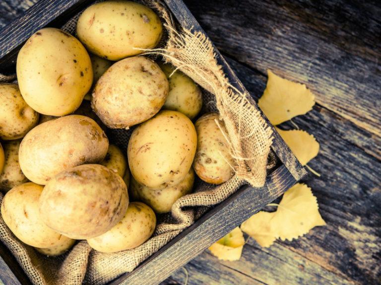 Πατάτες κατά της παχυσαρκίας | vita.gr