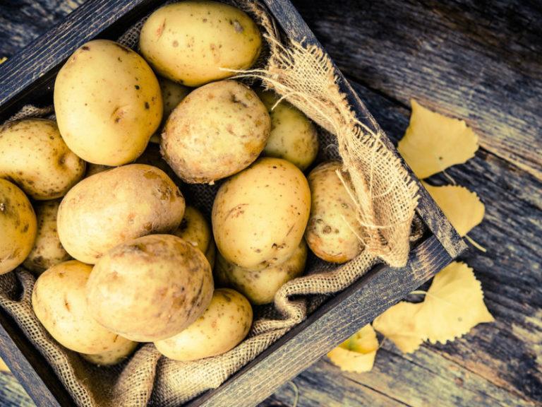 Λεξικό πατάτας | vita.gr