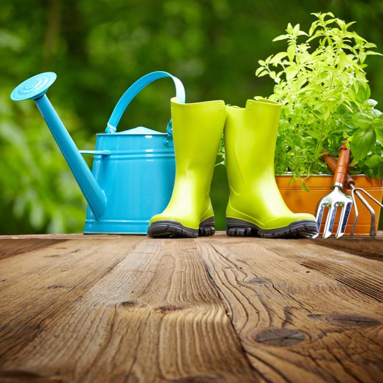 Οικολογικοί τρόποι φυτοπροστασίας | vita.gr