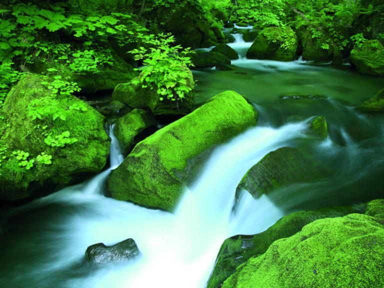 Ξεχειλίζουν τα ποτάμια; | vita.gr