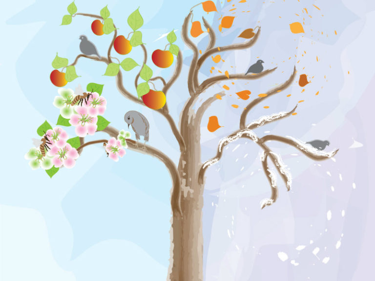 Πόσο μας επηρεάζει η εποχή της γέννησής μας; | vita.gr