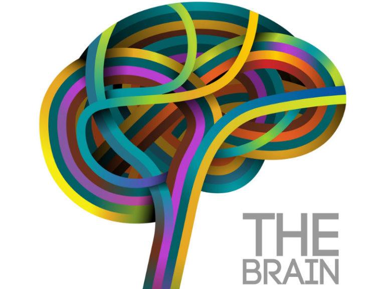 Διαπερνώντας τον φραγμό του εγκεφάλου | vita.gr