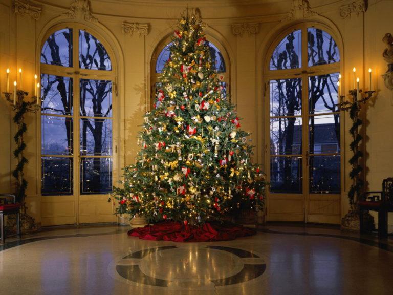 Πώς θα στολίσετε το τέλειο χριστουγεννιάτικο δέντρο | vita.gr