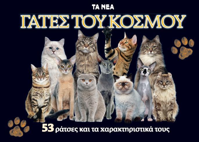 5 λόγοι για να πάρετε γάτα! | vita.gr