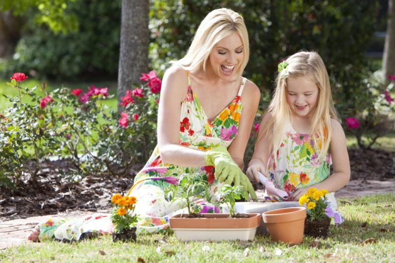 Υγιή φυτά χωρίς χημικά | vita.gr