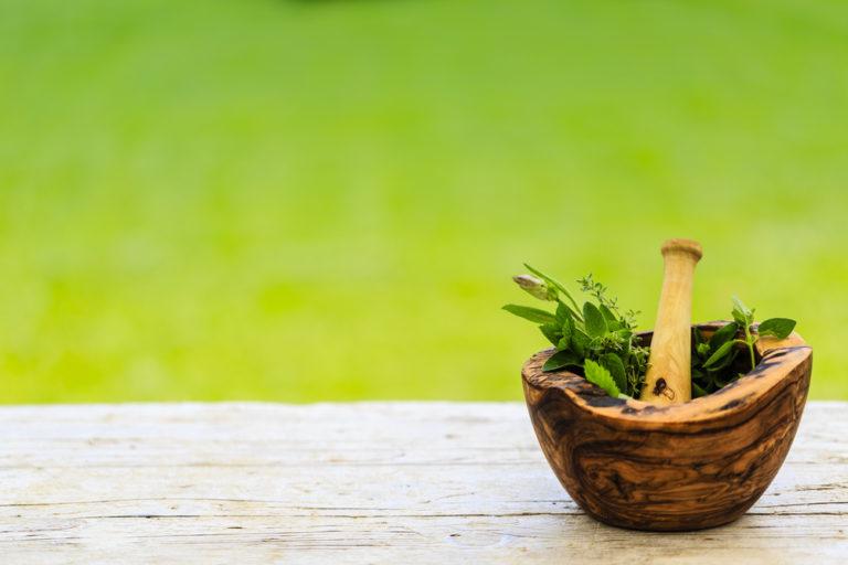 8 βότανα που ρίχνουν τη χοληστερίνη | vita.gr