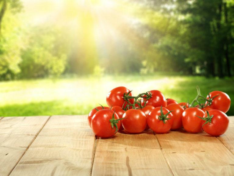 Τα πολύτιμα μικροστοιχεία των φυτών | vita.gr