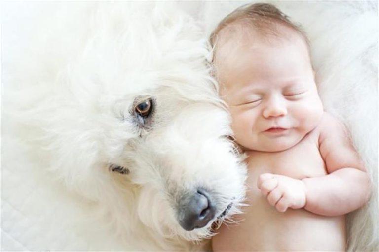 Παιδί & κατοικίδιο: οι καλύτεροι φίλοι!   vita.gr