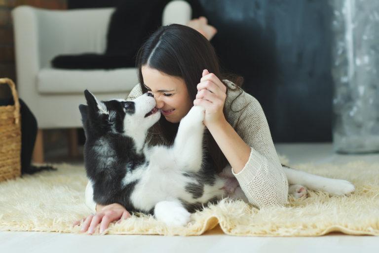 Σκύλος: Μας χαρίζει χρόνια | vita.gr