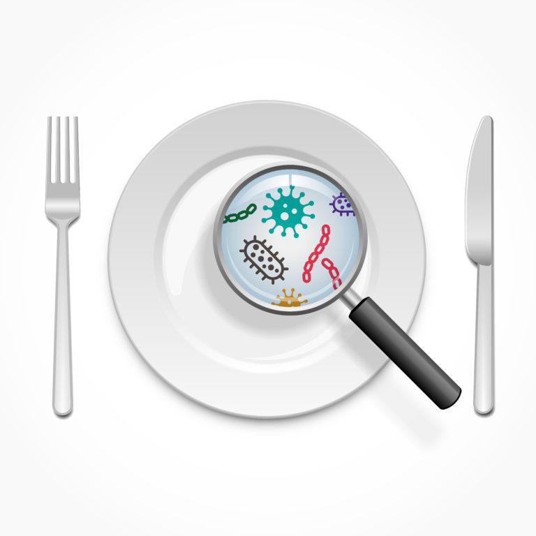 Πόσο επικίνδυνη είναι η μύγα στο φαγητό μας; | vita.gr