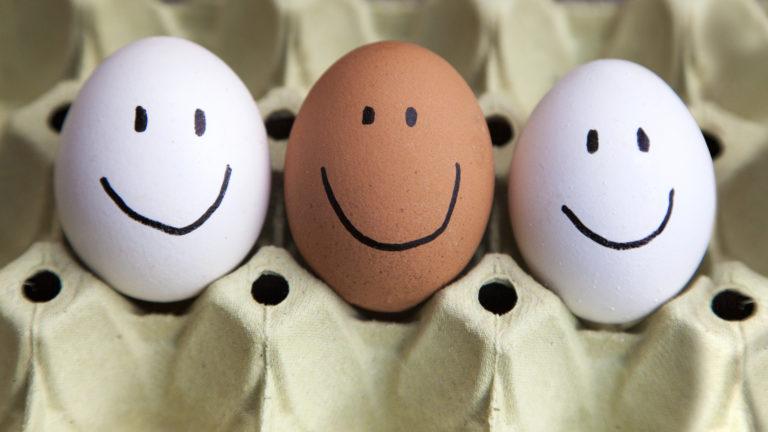 Τα αυγά αυξάνουν το IQ του μωρού | vita.gr