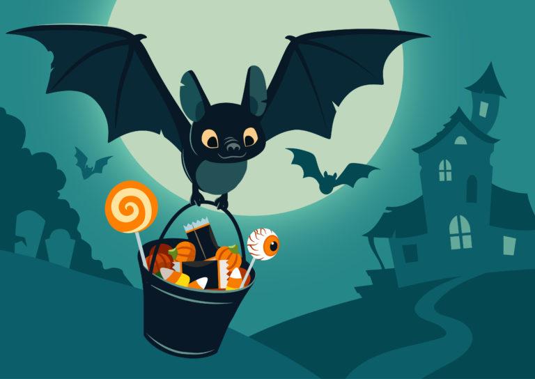 Οι νυχτερίδες & το μυστικό της μακροζωίας | vita.gr