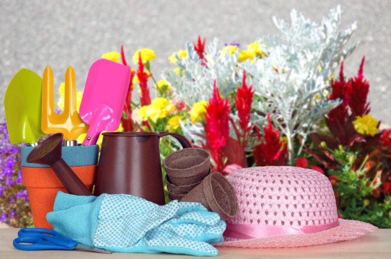 Κήπος: Προετοιµάστε τα φυτά σας για την άνοιξη | vita.gr