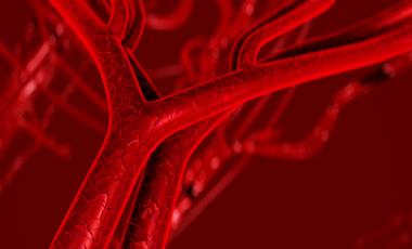Φάρμακο «ανοίγει» τις αρτηρίες | vita.gr