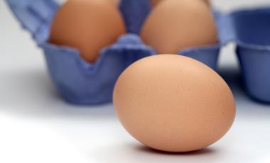 Τα αυγά στην αντεπίθεση! | vita.gr