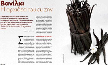 Βανίλια: Η ορχιδέα του ευ ζην | vita.gr