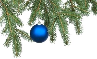 Πόσο οικολογικό είναι το δέντρο σας; | vita.gr