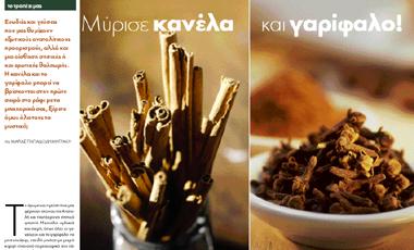 Μύρισε κανέλα και γαρίφαλο! | vita.gr