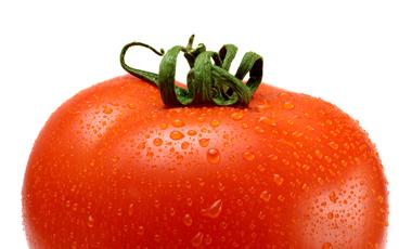 Έφτασε η… σούπερ ντομάτα! | vita.gr