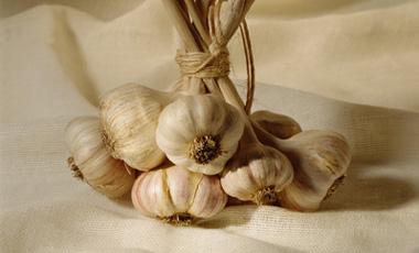 Σκόρδο για το νευροκαβαλίκεμα | vita.gr