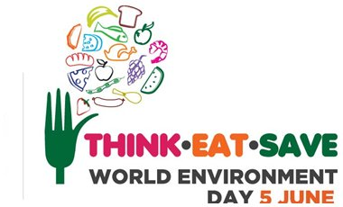 Παγκόσμια Ημέρα Περιβάλλοντος 2013   vita.gr