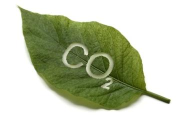Αλλεργικοί στο CO2; | vita.gr
