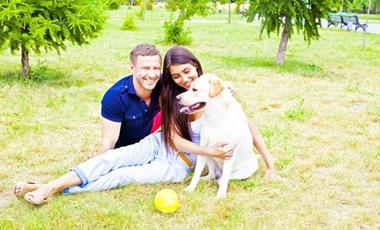 Ο σκύλος κάνει καλό στην καρδιά | vita.gr