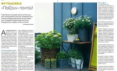 Φυτοδοχεία. «Παίζουν» παντού! | vita.gr