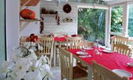«Λιαστή Ντομάτα» | vita.gr