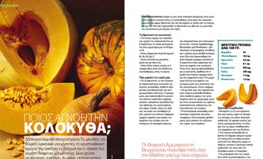 Ποιος αγνοεί την κολοκύθα; | vita.gr