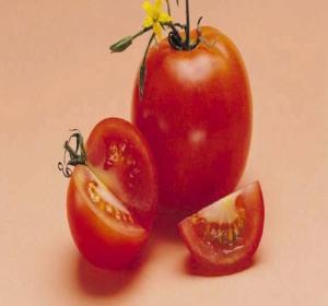 Nτομάτα για τους κάλους | vita.gr