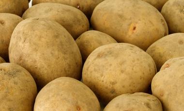 Μια πατάτα για την καρδιά μας | vita.gr