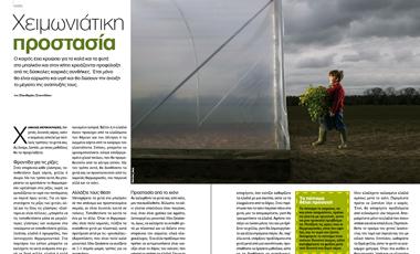 Φυτά: Χειµωνιάτικη προστασία | vita.gr