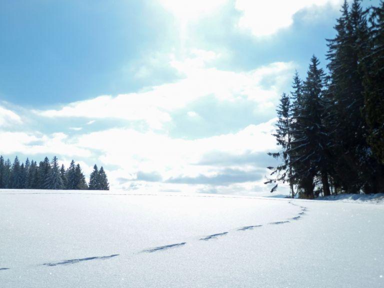 Η «Πηνελόπη» φέρνει χιόνια και στην Αττική – Πού θα χτυπήσει η κακοκαιρία | vita.gr