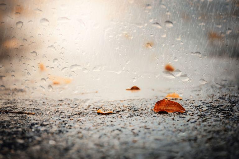 Συνεχίζονται οι βροχές – Μικρή πτώση της θερμοκρασίας | vita.gr