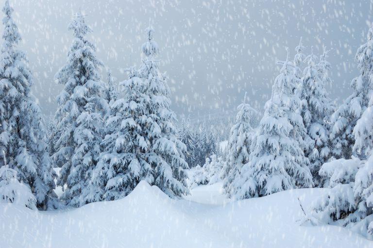 Σαρώνει τη χώρα η «Σοφία» – Πού θα χιονίσει τις επόμενες ώρες | vita.gr