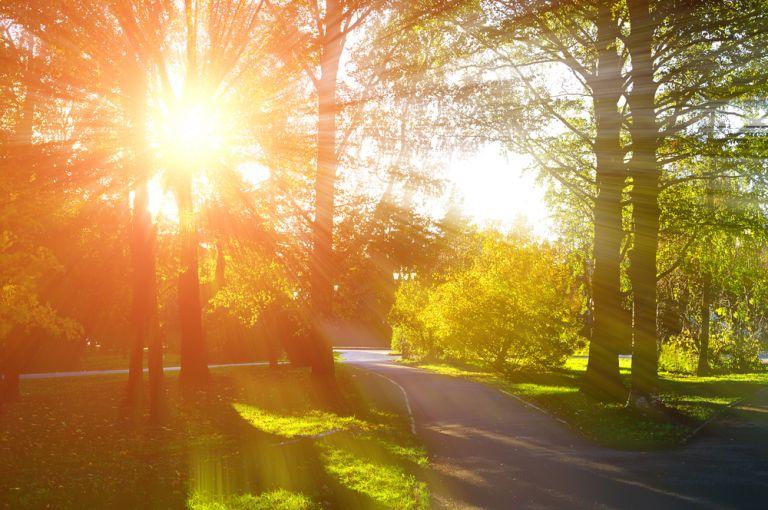 Ανοιξιάτικος καιρός –  Η θερμοκρασία σε άνοδο | vita.gr