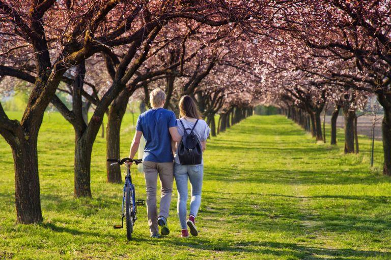 Το καθημερινό 20λεπτο περπάτημα στη φύση μειώνει δραματικά το άγχος | vita.gr